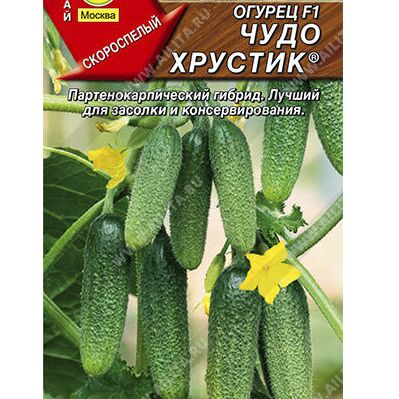 Семена АЭЛИТА: все в наличии от 4руб!!! — Семена овощей, зелени и пряных трав (по алфавиту) — Семена