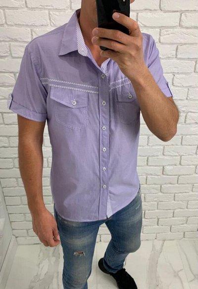 MODAVI. Недорогая одежда для наших Мужчин — Рубашки — Одежда