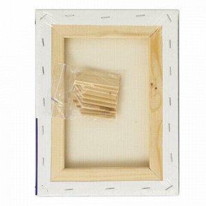 Холст на подрамнике BRAUBERG ART CLASSIC, 18х24см, грунтованный, 100% хлопок, крупное зерно, 190643