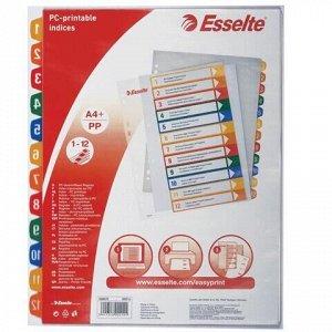 Разделитель пластиковый ESSELTE, А4+, 12 листов, цифровой 1-12, прозрачное оглавление, 100214