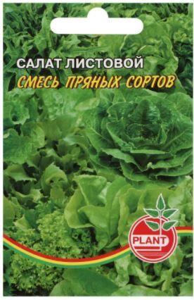 Семена Салат, смесь пряных сортов