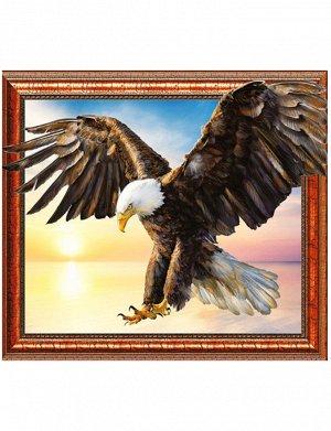 Алмазная мозаика 3D Белоголовый орлан