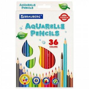 Карандаши цветные акварельные BRAUBERG PREMIUM AQUARELLE, 36 цветов, грифель мягкий 4 мм, 181674