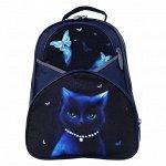 Рюкзак школьный, Calligrata, 37 х 26 х 13 см, эргономичная спинка, «Кошечка»