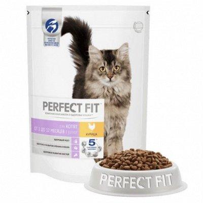 Нашим любимцам: Whiskas, Kitekat, Sheba, Pedigree, Chappi — Кормя для котят Perfect Fit — Корма
