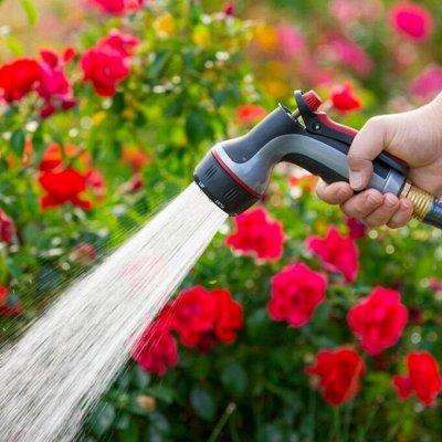 ♚Elite Home♚ Многофункциональная техника для кухни — Опрыскивание и полив огорода — Сад и огород
