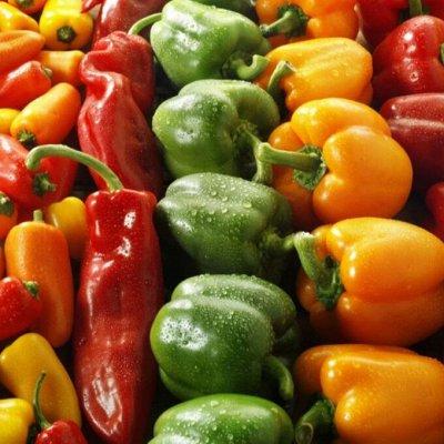 Сад-огород на балконе: семена, почвогрунт, удобрения — Перцы, в т.ч. комнатные сорта — Семена овощей