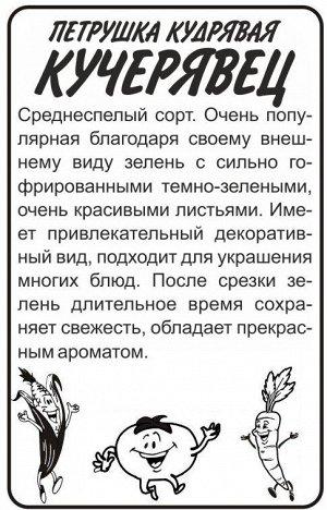 Зелень Петрушка Кудрявая Кучерявец/Сем Алт/бп 1 гр.
