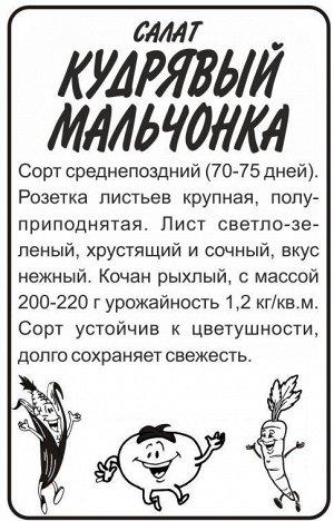 Зелень Салат Кудрявый Мальчонка/Сем Алт/бп 0,5 гр.