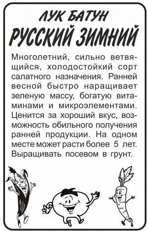 Лук батун Русский Зимний (белый пакет) 1г; Семена Алтая