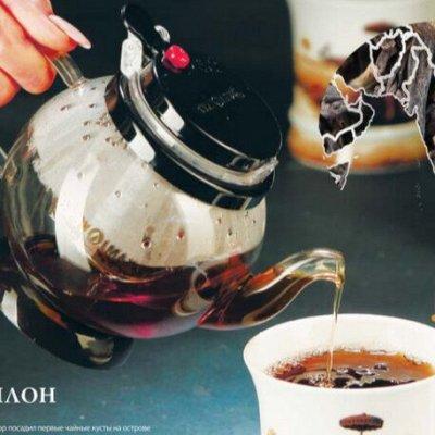 GUТenberg — чай и кофе, от турки до ложечки 25, Весна — френч-прессы, чайники Гунфу и колбы — Чай, кофе и какао