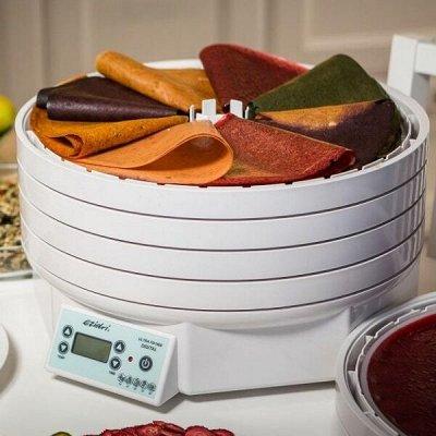 Ezidri - лучшая сушилка-дегидратор. Все комплектующие. — Сушильный аппарат (дегидратор) Ezidri Ultra FD1000 digital — Для кухни