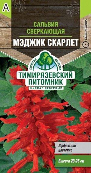 Семена Tim/цветы сальвия Мэджик Скарлет 0,05г