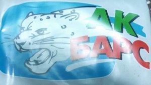 Ак Барс Габариты: 11 x 20 cm Наклейка изготовлена методом прямой печати интерьерного качества с последующей плоттерной резкой по контуру. Идеально подходит для вашего автомобиля.