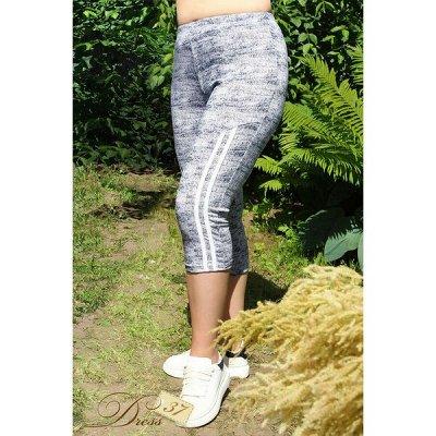 DRESS37 - доверяем трикотажу! От 42 до 66 размера — Бриджи, шорты — Бриджи и капри
