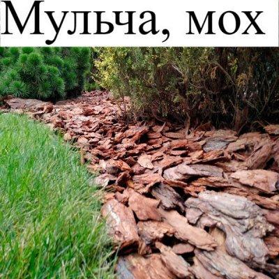 Питательные почвогрунты. Защита и удобрения.  — Мульча, мох — Средства защиты
