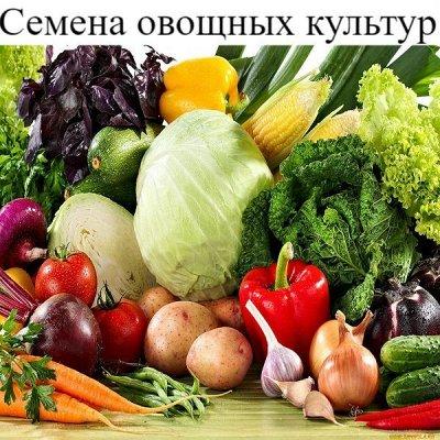 Питательные почвогрунты. Защита и удобрения.  — Семена овощных культур — Семена овощей
