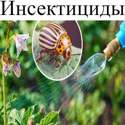Питательные почвогрунты. Защита и удобрения.  — Инсектициды (средства от насекомых вредителей) — Защита от вредителей