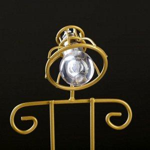 Кашпо с освещением, на золот подставке 22*11*10см