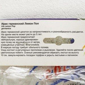 Ирис ГЕРМАНСКИЙ ЛЕМОН ПОП р-р I, 2 шт