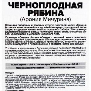 Саженец Черноплодная Рябина 1 шт   , Весна 2021