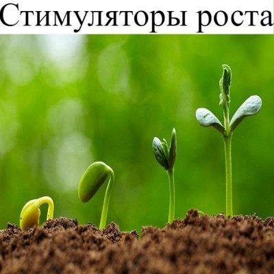 Питательные почвогрунты. Защита и удобрения.  — Регуляторы и стимуляторы роста — Стимуляция роста