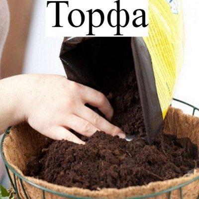 Питательные почвогрунты. Защита и удобрения.  — Торфа — Удобрения и грунт
