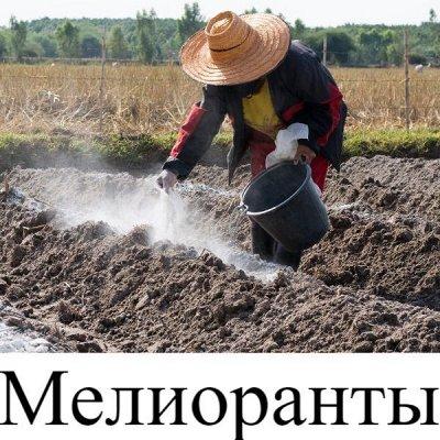 Питательные почвогрунты. Защита и удобрения.  — Мелиоранты — Биосоставы