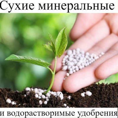 Питательные почвогрунты. Защита и удобрения.  — Сухие минеральные и водорастворимые удобрения — Минеральные