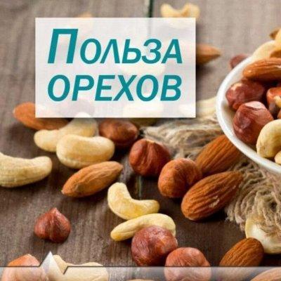 Орехи и Сухофрукты - Вкусные, сладкие и такие полезные! — Орехи и здоровье: вред или польза? — Кондитерские изделия