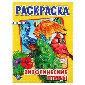 Раскраска УМка Экзотические птицы формат А44