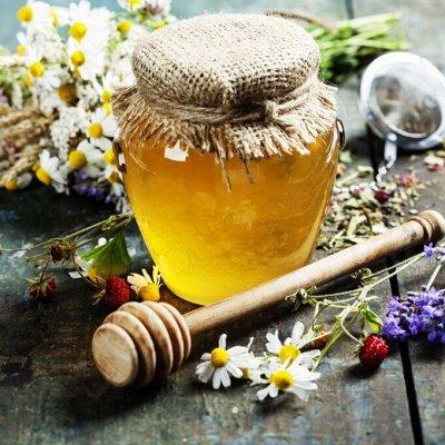 Дермавит - лучшее средство от папиллом. — Продукция пчеловодства. Фитомед — Травы и сборы