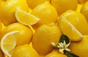 Цитрус лимон Femminello Incappucciato