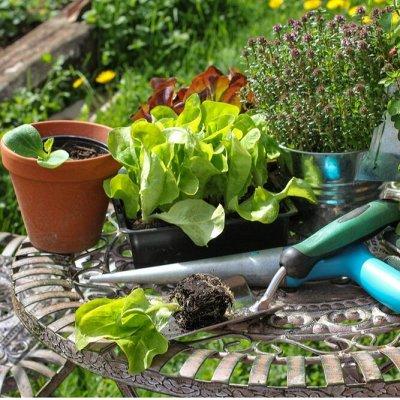 Все для сада и огорода (много новинок)  — Садовый инвентарь — Садовый инвентарь
