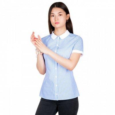 FAQ — Очень недорогой трикотаж! Размеры с 42 по 56 — Рубашки — Рубашки