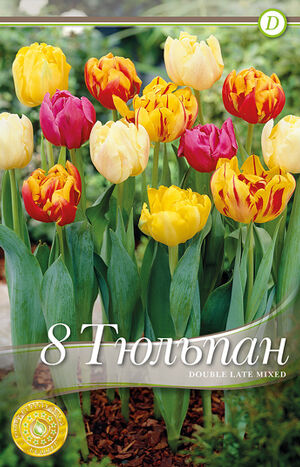Тюльпан Дабл Лейт Микс (8 лук.)