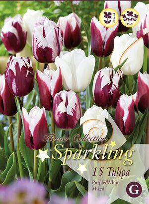 Тюльпан Пёпл/Вайт Микс (15 лук.)