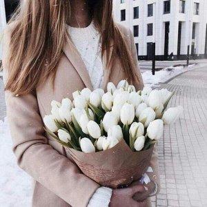 Тюльпан Вайт Дрим