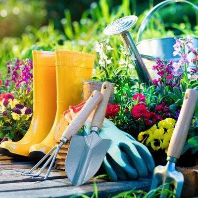 ~Богатый выбор семян и разные огородные нужности.