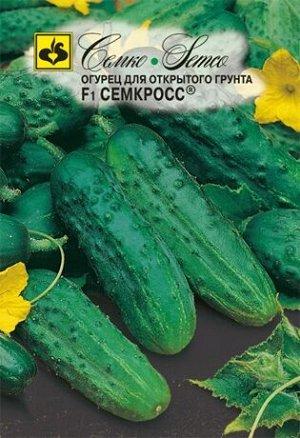 Огурец Семкросс F1 1 гр