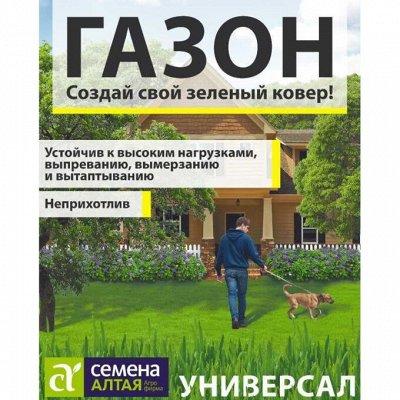 АГРОНОМ: Агрохимия по приятным ценам. Сидераты.  — Газонная трава — Семена газонных трав