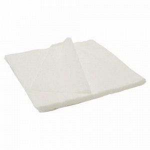 Салфетки одноразовые ЧИСТОВЬЕ нестерильные, комплект 100 шт., 20х20 см, спанлейс 40 г/м2, белые, 00-144