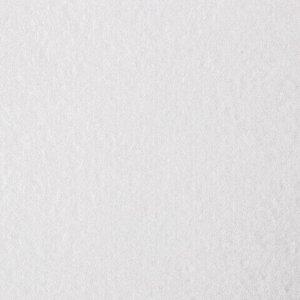 """Альбом для рисования, А4, 40 листов, гребень, выборочный лак, подложка, 120 г/м2, BRAUBERG, 205х290 мм, """"Картина"""" (2 вида), 102834"""