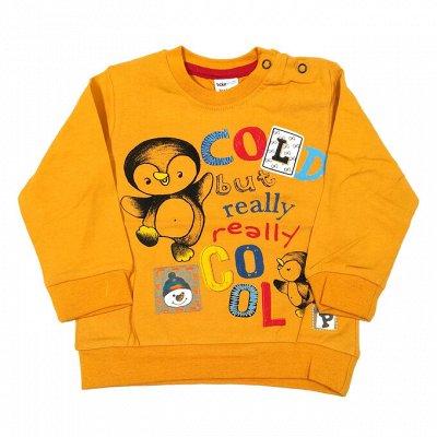 Одежда для детей, малышей 0+ и прекрасных Мам. Супер цены!🔥  — Мальчикам Джемперы (тонкие) — Джемперы