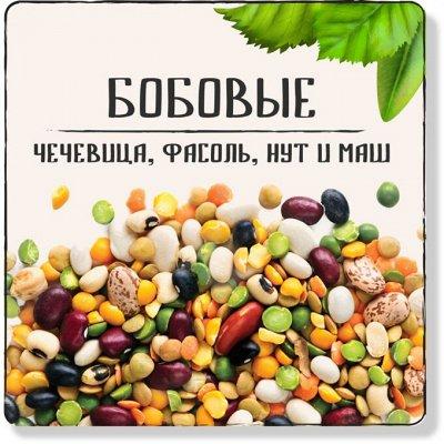 Акция Грецкий орех 120 руб! Сухофрукты, орехи, цукаты — Бобовые: чечевица, фасоль, нут и маш
