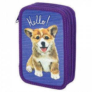 """Пенал BRAUBERG, 3 отделения, ламинированный картон, """"Little Dog"""", 19х11 см, 229214"""