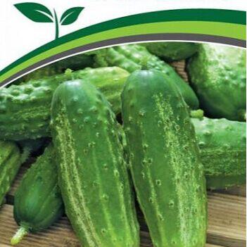 Чемоданы! Семена. Посуда. Полотенца. Пристрой. Скидки до 50% — Семена овощей и зелени — Семена овощей