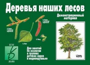 Игра Деревья наших лесов