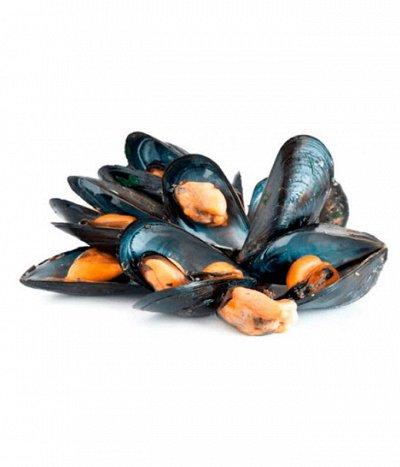 Морепродукты:крабы,креветки,гребешок,чука,мидии. — мидии — Свежие и замороженные