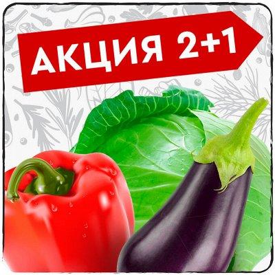Экспресс! Мудрый дачник! Лук - Севок в наличии!✔ — Акция 2+1 в подарок! — Семена овощей
